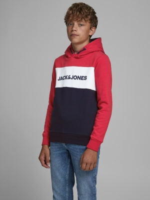JJELOGO BLOCKING SWEAT HOOD NO logo